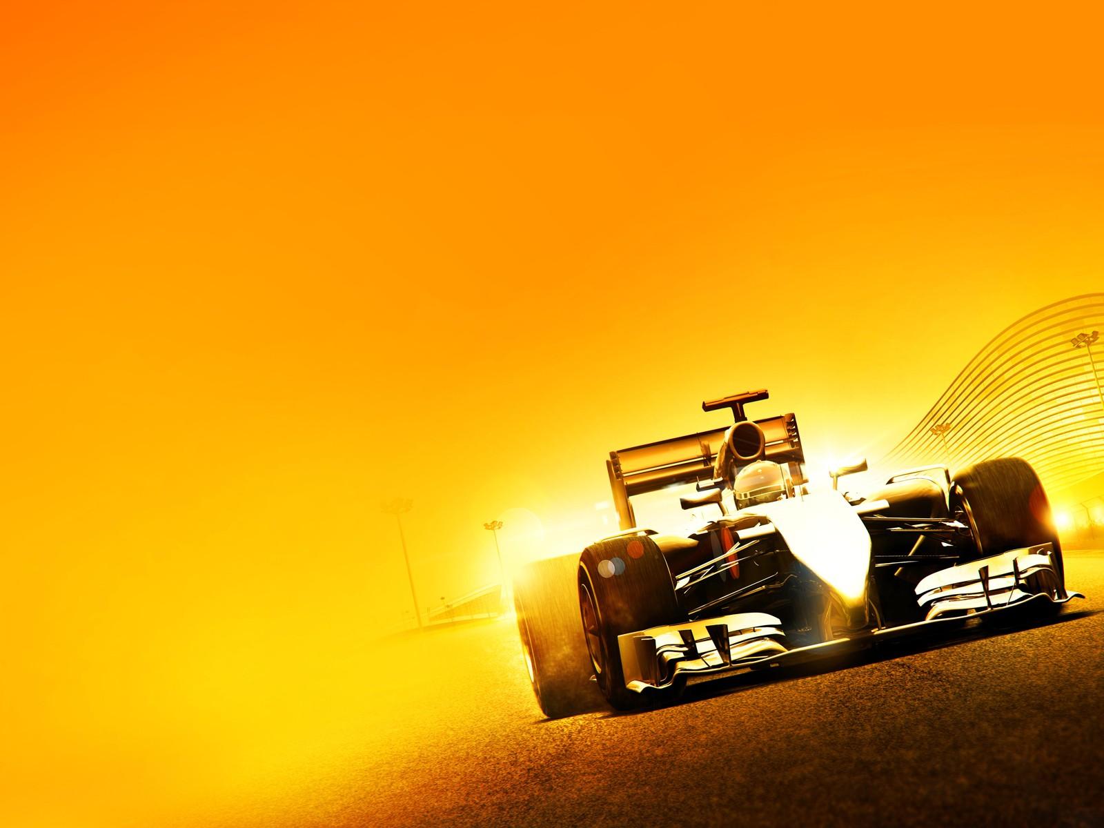 F1 2014 Mod Cam Driver's Eyes v1.0