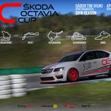 Tim Gábor a Skoda Octavia Cupban versenyez jövőre!