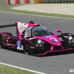rF2 Endurance Series mod képek
